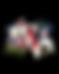 AVB Logo 2.png