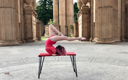 Palace of Fine Arts Contortion Stag