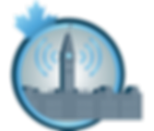 icon4-DigitalGovernment.png