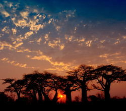 Atardecer en Botswana