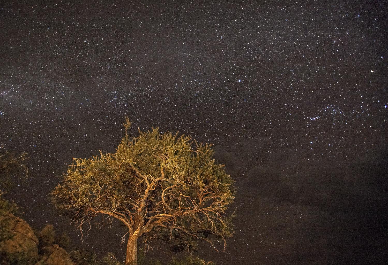 Noche de Namibia