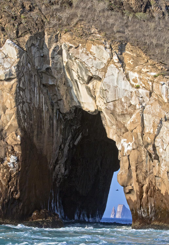 Galapagos vista web