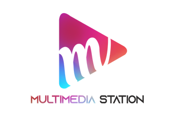 multimediastatiion logo