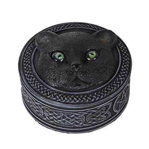 Cat box with rolling eyeballs