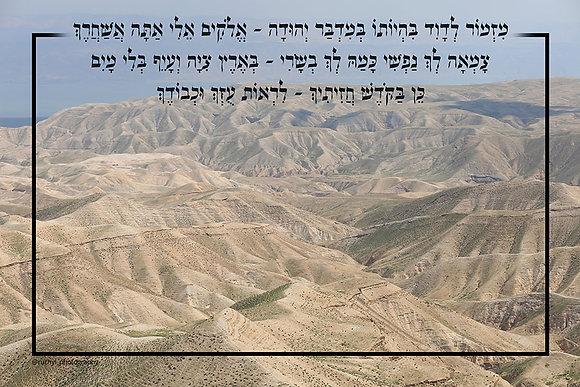 Sukkah Poster - Midbar Yehuda