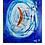 Thumbnail: Fishtail