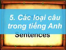 5. Các loại câu trong tiếng anh