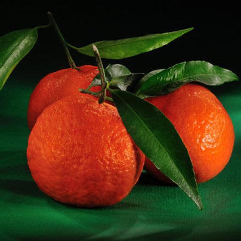 Mandarin Red