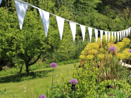 Our Brilliant Bunting