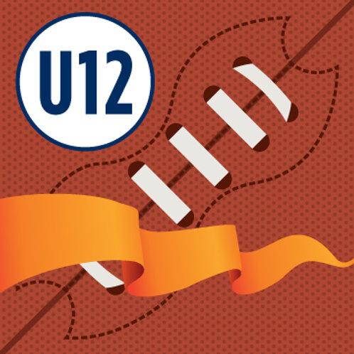 U12 Flag Football/Skills Program