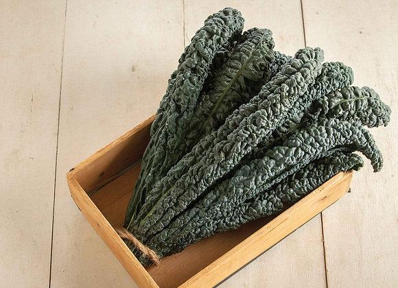 Kale (Boerenkool)