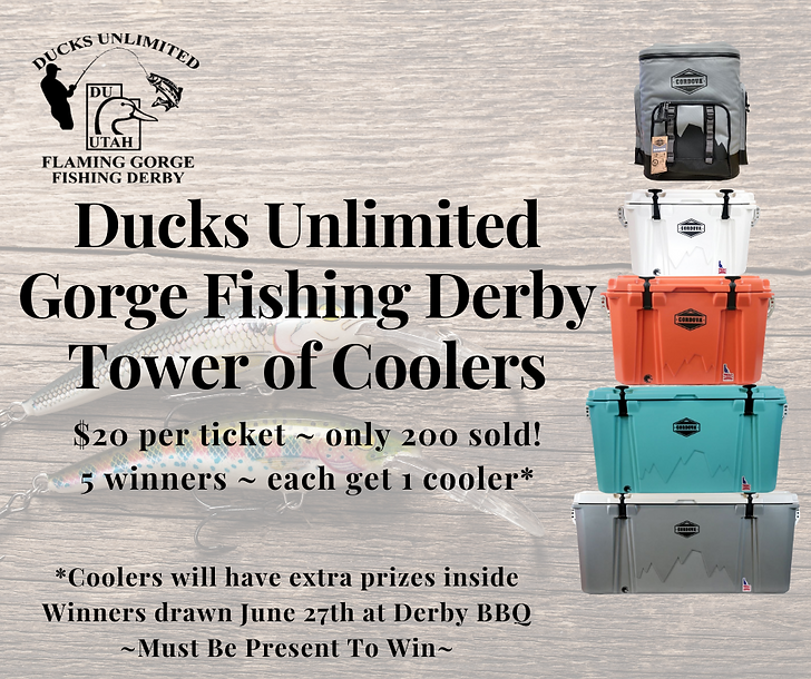 Ducks Unlimited Gorge Fishing Derby Towe