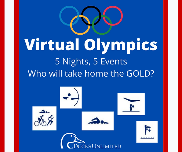 Virtual Olympics.png