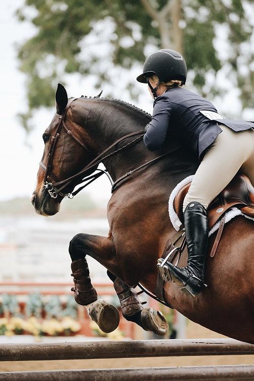 Ist dein Pferd bei 100 Prozent?