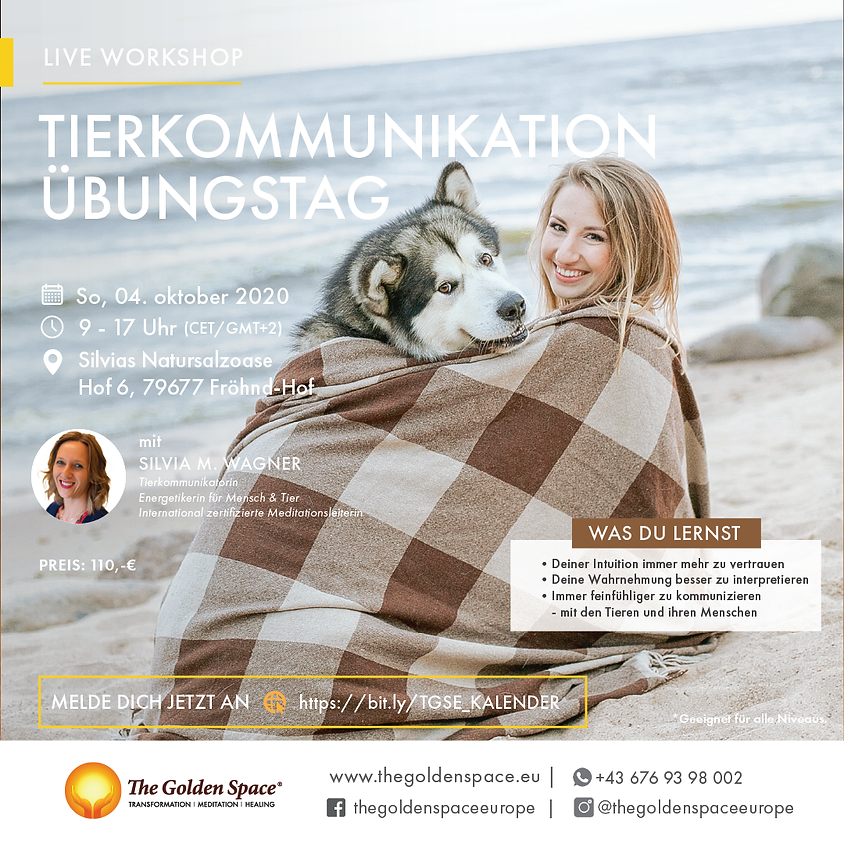 Tierkommunikation Übungstag