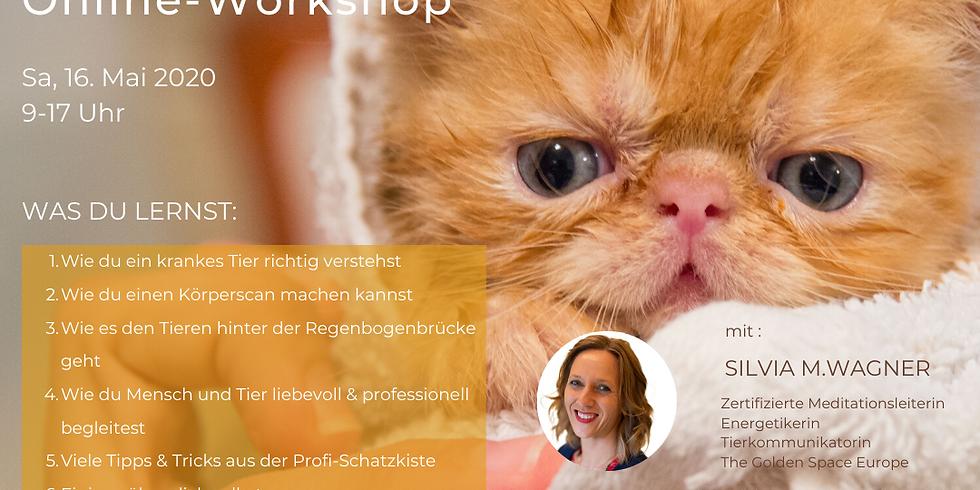 Tierkommunikation für Fortgeschrittene - Online Workshop (1)