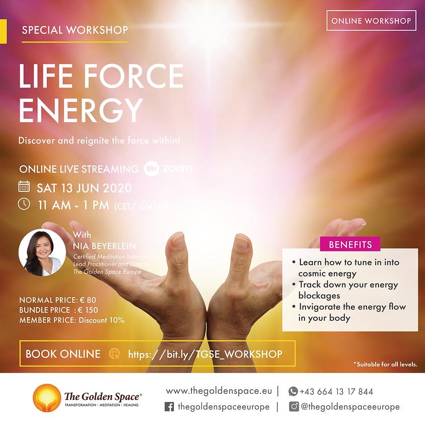 Life force energy Workshop