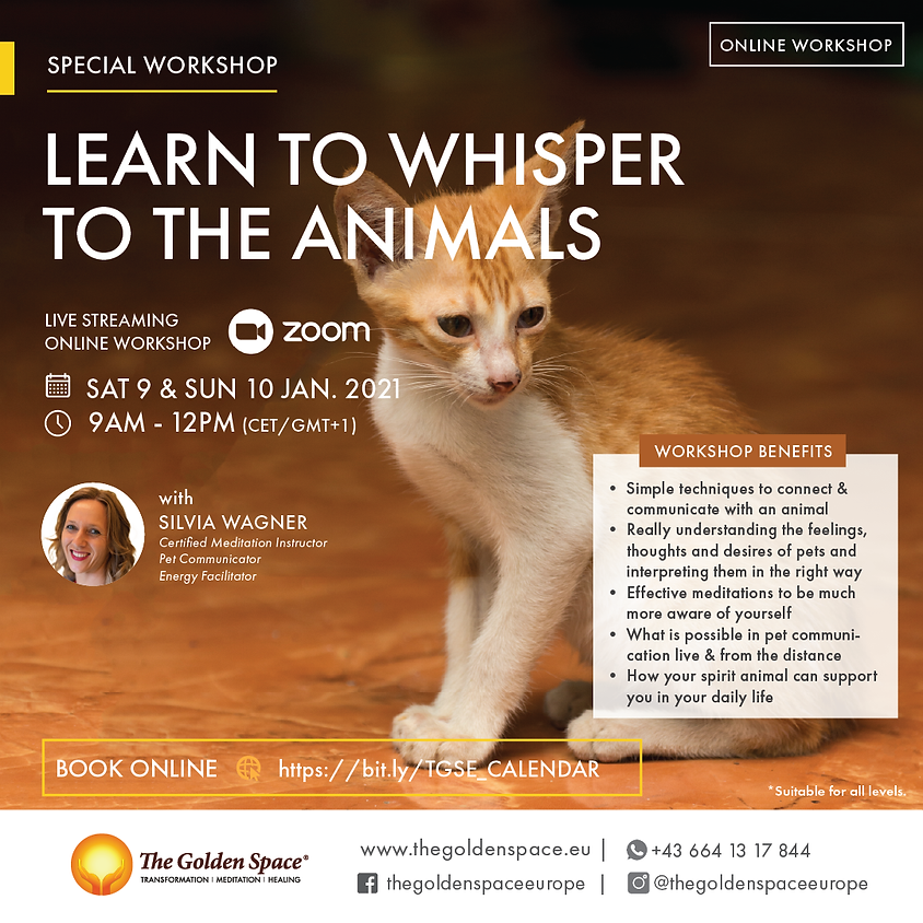 Learn to whisper to the animals Workshop