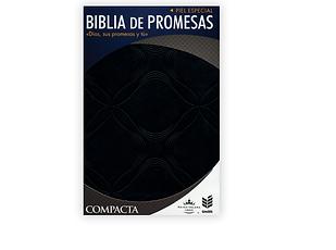 promesas.png