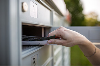 Five direct mailers that can help you grow your business