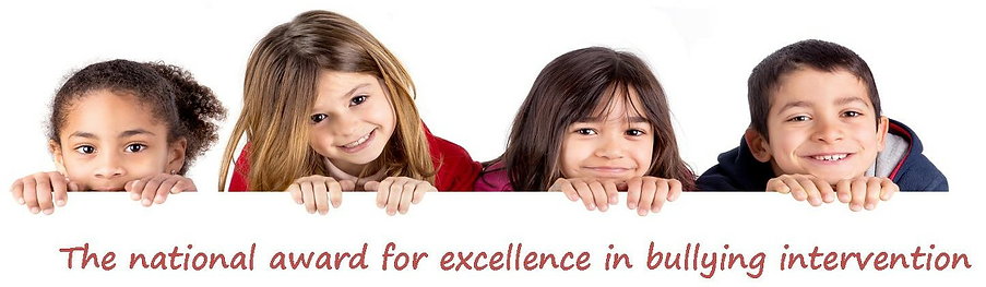 The nationl award for excellence in bullying intervention