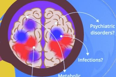 Autonomic Changes in Epilepsy