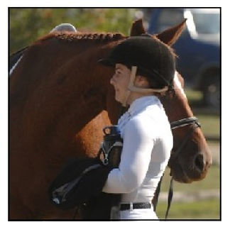 Horse show concentration at Equus Enlightened.