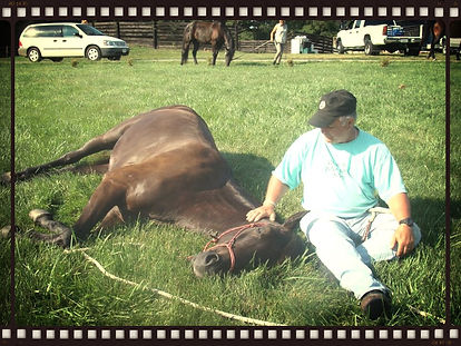 Relaxing with your horse at Equus Enlightened.