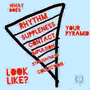Dressage Training Pyramid Upside Down