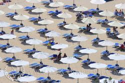 parasol_pattern_sperlongaIMG_5857_ss.jpg