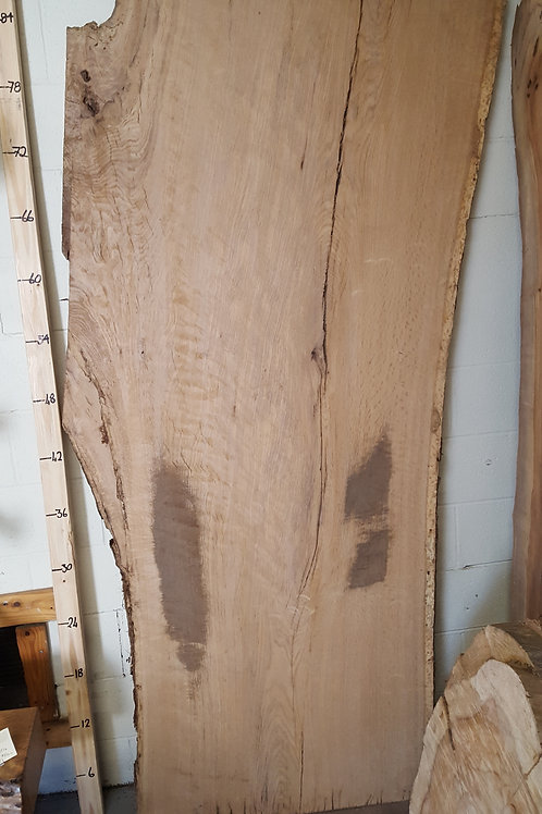 Burr Oak Slabs Large