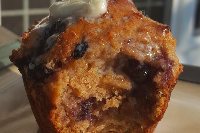 Whole Wheat Blueberry Muffin