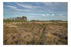 Habitat image 2