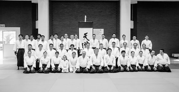 Seminario Aikido México Octubre 2015