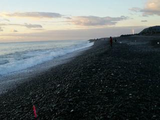 七里御浜で釣った魚②