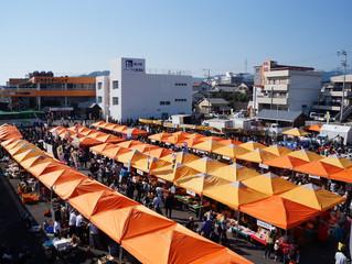 🍊御浜みかん祭り🍊2017
