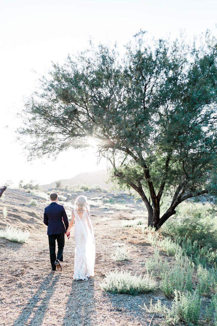 Bride and groom in desert