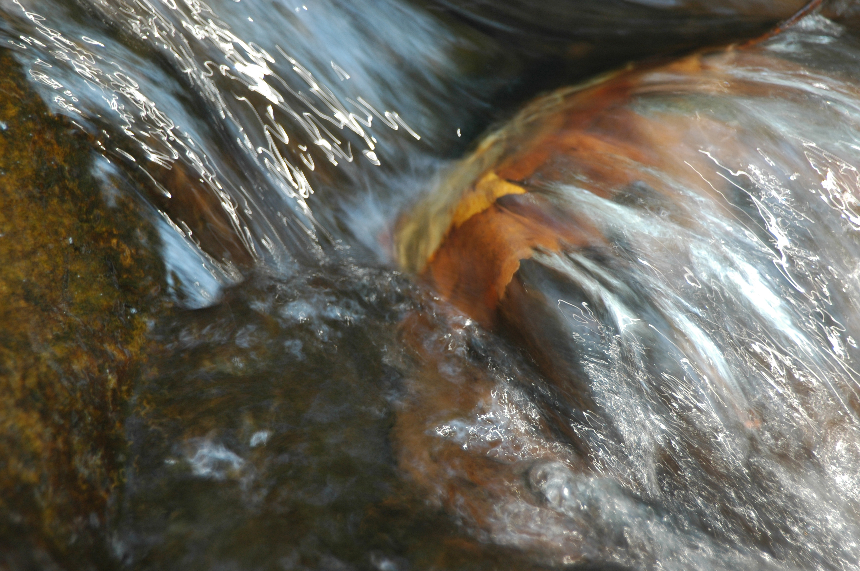 Flowing Stoney Creek