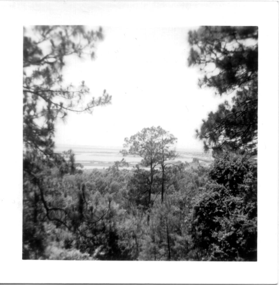 Overlooking Mobile Bay