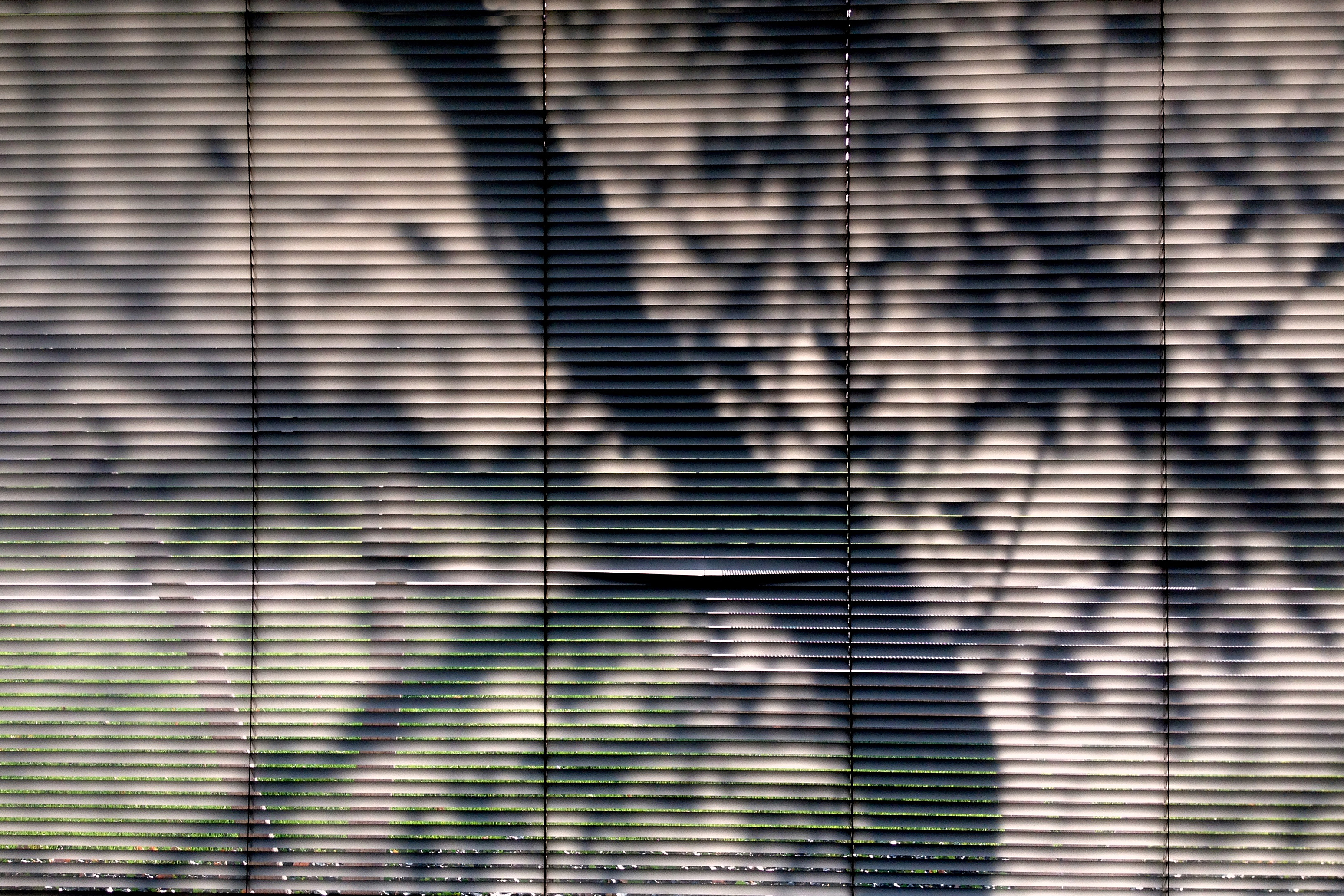 Andre's Window