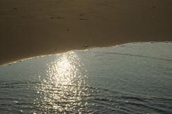 Easy Morning Tide