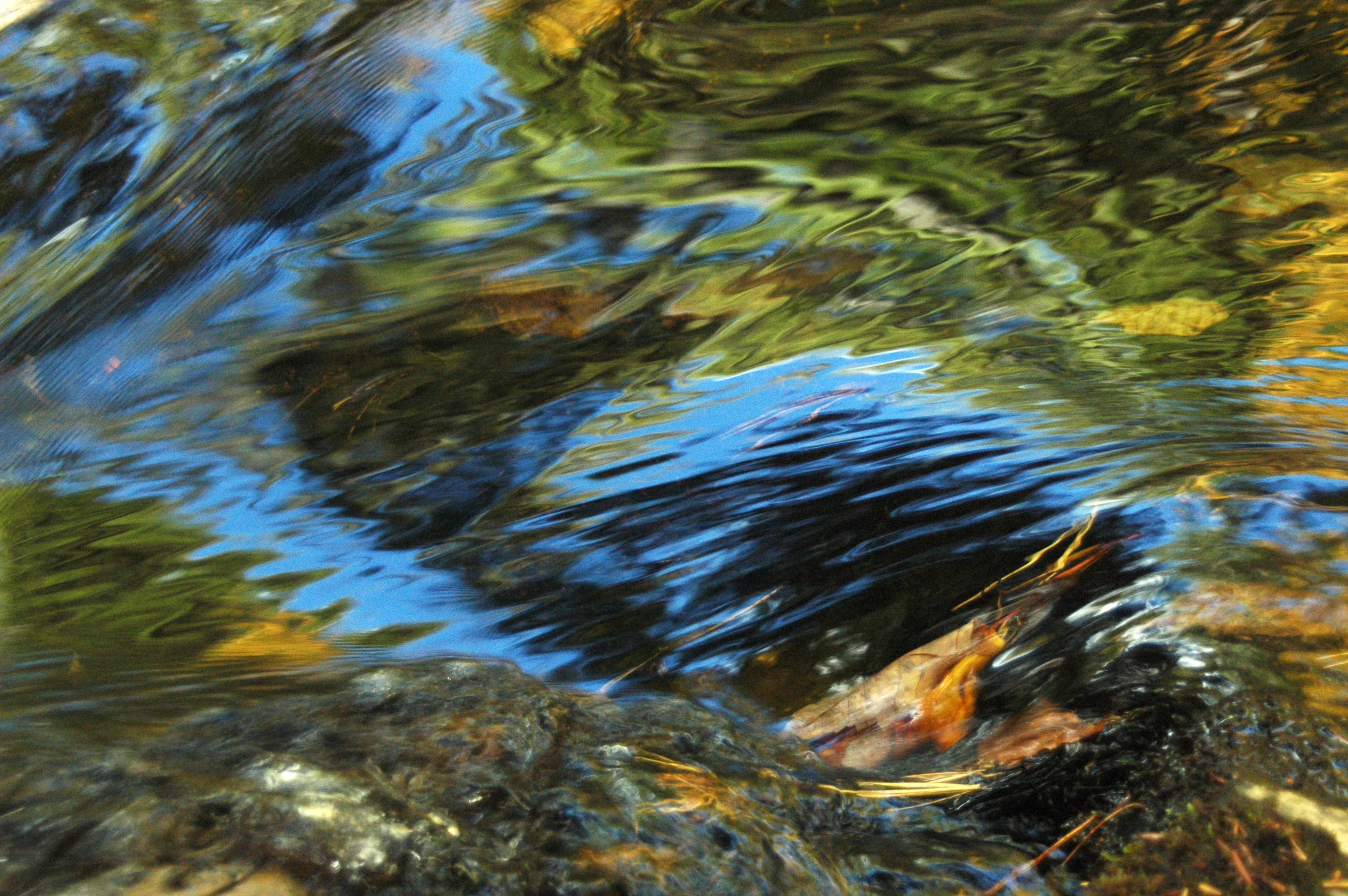Brisk Creek