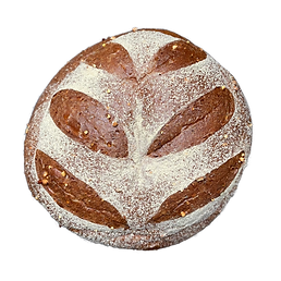 Seeded (1).png