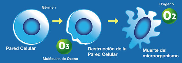 principio-ozono-2.jpg