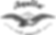 Aquila string logo.png