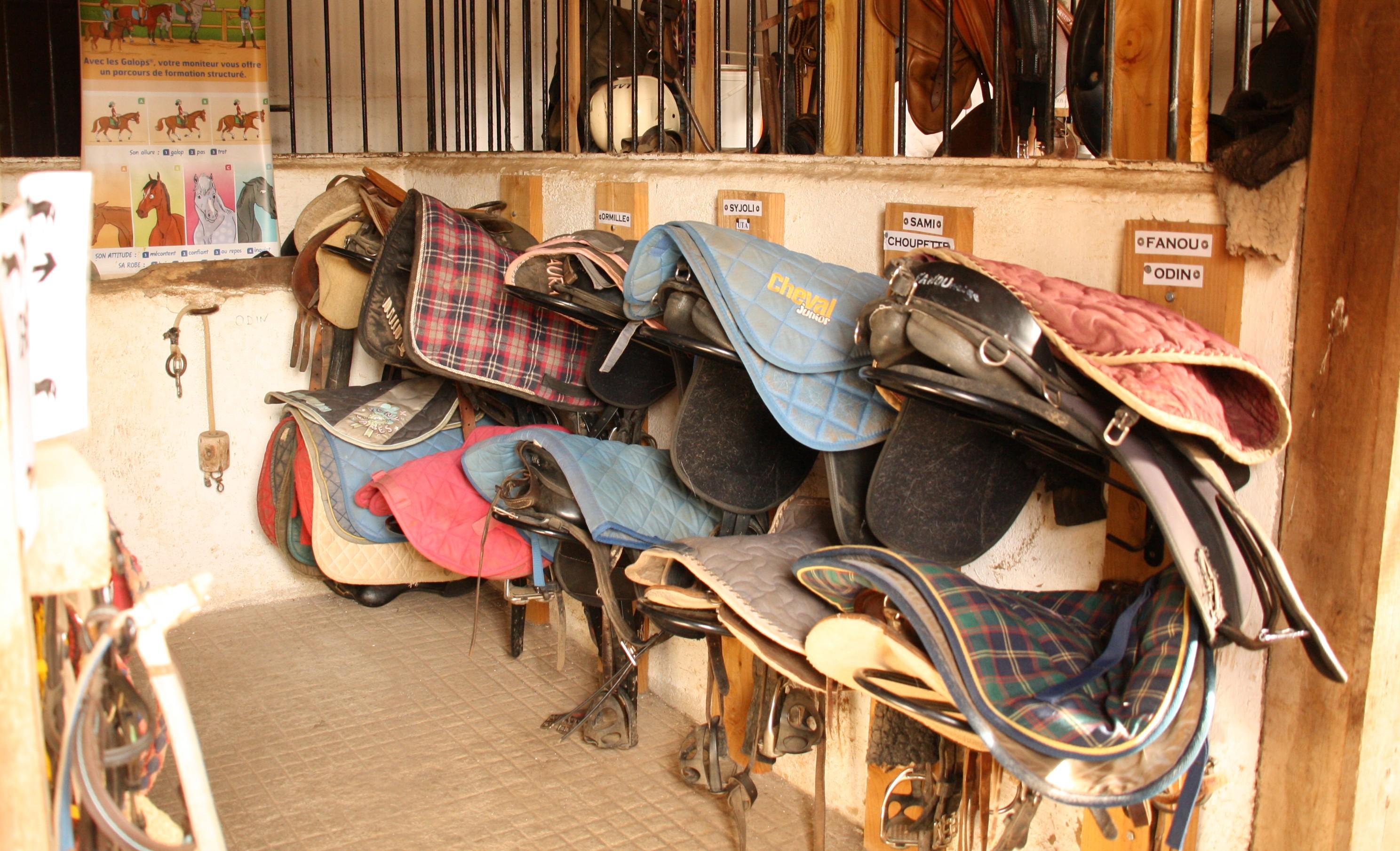 Ecuries de Seuzac sellerie shetland
