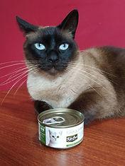 kit-cat_edited.jpg