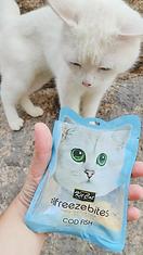 kitcat-freeze-bites.webp