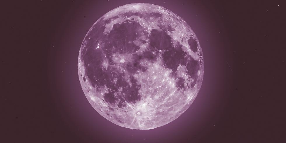 Full Moon Singing Circle April - Pink Moon