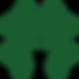 Shamrock Boxing Logo